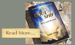 soul shift novel